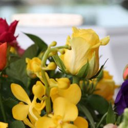 flower arrangements berwick-contact-page