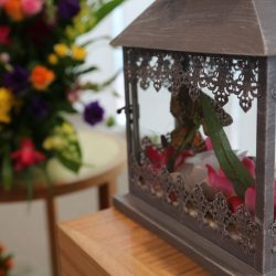 butterfly-release-by-templeton-family-funerals