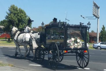 horse-and-carriage-funeral-service